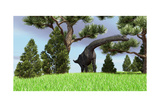 Large Brachiosaurus Grazing Among Trees Prints