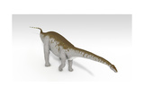 Apatosaurus Dinosaur, White Background Posters