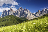 Panoramic View of Dolomite Alps and Forest, Northern Italy Photographic Print