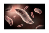 Conceptual Image of Paramecium Posters