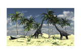 Two Brachiosaurus Dinosaurs Grazing on Trees Prints