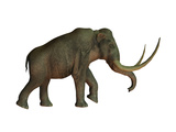The Columbian Mammoth, an Extinct Species of Elephant Posters