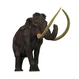 The Woolly Mammoth Art