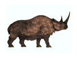 Woolly Rhinoceros, an Extinct Mammal from the Pleistocene Period Posters