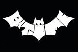 Bat Billeder
