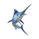 Blue Marli Lámina