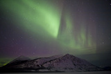 Aurora Borealis over Mountain Range, Carcross, Yukon, Canada Photographic Print