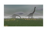 Two Brachiosaurus Dinosaurs Grazing in the Mist Posters