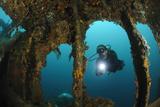 A Diver Explores the Mawali Shipwreck, Lembeh Strait, Indonesia Reprodukcja zdjęcia