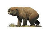 Diprotodon Optatum, the Largest known Marsupial Poster