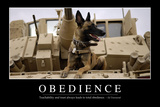 Obedience: Inspirational Quote and Motivational Poster Photographic Print