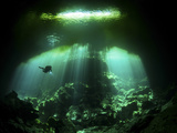 A Diver in the Garden of Eden Cenote System in Mexico Fotografie-Druck