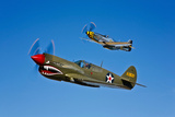 A P-40E Warhawk and a P-51D Mustang Kimberly Kaye in Flight Photographic Print