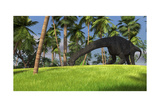 Large Brachiosaurus Grazing in a Tropical Climate Print