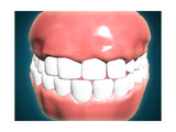 Front View of Human Mouth with Teeth and Gums Posters