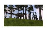 Tyrannosaurus Rex Confronts a Large Brachiosaurus Print