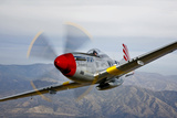 A P-51D Mustang in Flight Near Prescott, Arizona Photographic Print