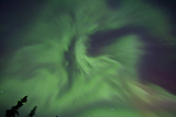 Aurora Borealis in Clear Skies, Yukon, Canda Photographic Print