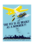 Wpa Propaganda Poster of a Bomber Plane and a Fly Dropping Germs Poster