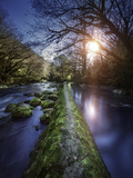 Natural Path Between Two Streams of River at Sunset, Ritsa Nature Reserve Photographic Print
