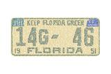 Florida Vintage Auto Plate Prints