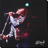 Bob Marley: Live In Concert Leinwand