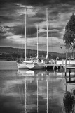Huon River Yacht Photographic Print by Margaret Morgan