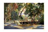 Bridge to the Light Giclee Print by Darrell Hill