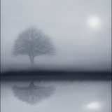 Dawn Whispers Photographic Print by Adrian Campfield