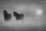 Monochrome Moods Photographic Print by Adrian Campfield