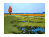 Be Still 1 Giclee Print by Don Tiller