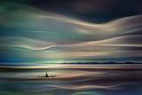 Orcas Fotografie-Druck von Ursula Abresch