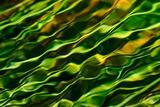 Green Water Photographic Print by Ursula Abresch
