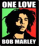 Bob Marley: One Love Leinwand
