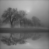 A Winters Day Photographic Print by Adrian Campfield