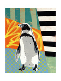 Humbold Penguin Giclee Print by  Urban Soule
