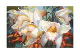 Orchid Fandango Giclee Print by Elizabeth Horning