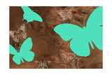 Butterflies 2 B Giclee Print by  jefdesigns