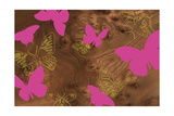 Butterflies 1 B Giclee Print by  jefdesigns