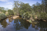 Barramundi Creek Photographic Print by Margaret Morgan