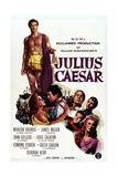 Julius César Art