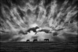 Against an Angry Sky Photographic Print by Adrian Campfield