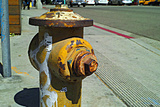 Yellow Fire Hydrant at Venice Beach Photographic Print by Steve Ash