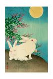 Rabbits and the Moon Impression giclée par Koson Ohara