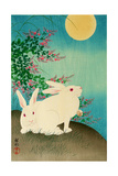 Rabbits and the Moon Giclee Print by Koson Ohara