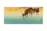Deer in Shallow Water Giclee Print by Koson Ohara
