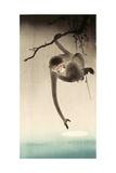 Monkey and Moon Giclée-tryk af Koson Ohara