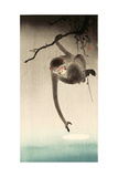 Monkey and Moon Giclee Print by Koson Ohara