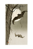 Flying Bats Giclee Print by Koson Ohara