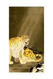 Roaring Tiger Giclee Print by Koson Ohara